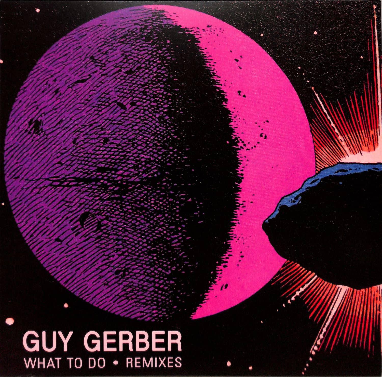 Guy Gerber - WHAT TO DO REMIXES
