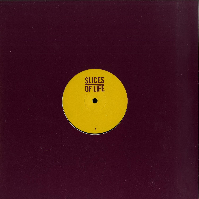 The Mole / Baaz / Dana Ruh / John Tejada - SLICES OF LIFE 10.1
