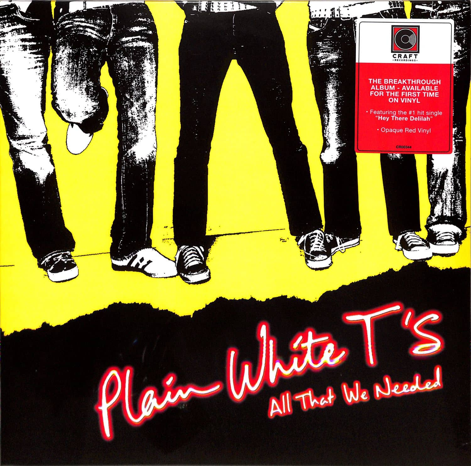Plain White Ts - ALL THAT WE NEEDED