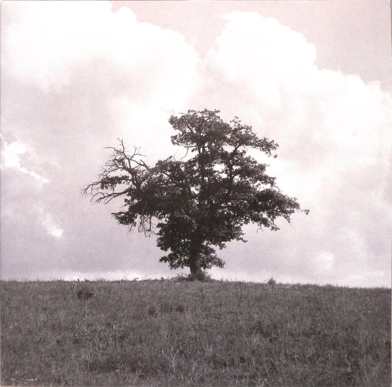 Eversines - IN VIVID MOTION