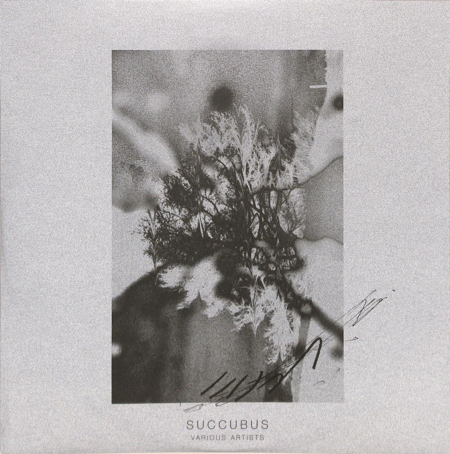 Various Artists - SUCCUBUS