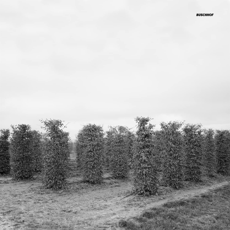 Douglas Greed - BUSCHHOF EP