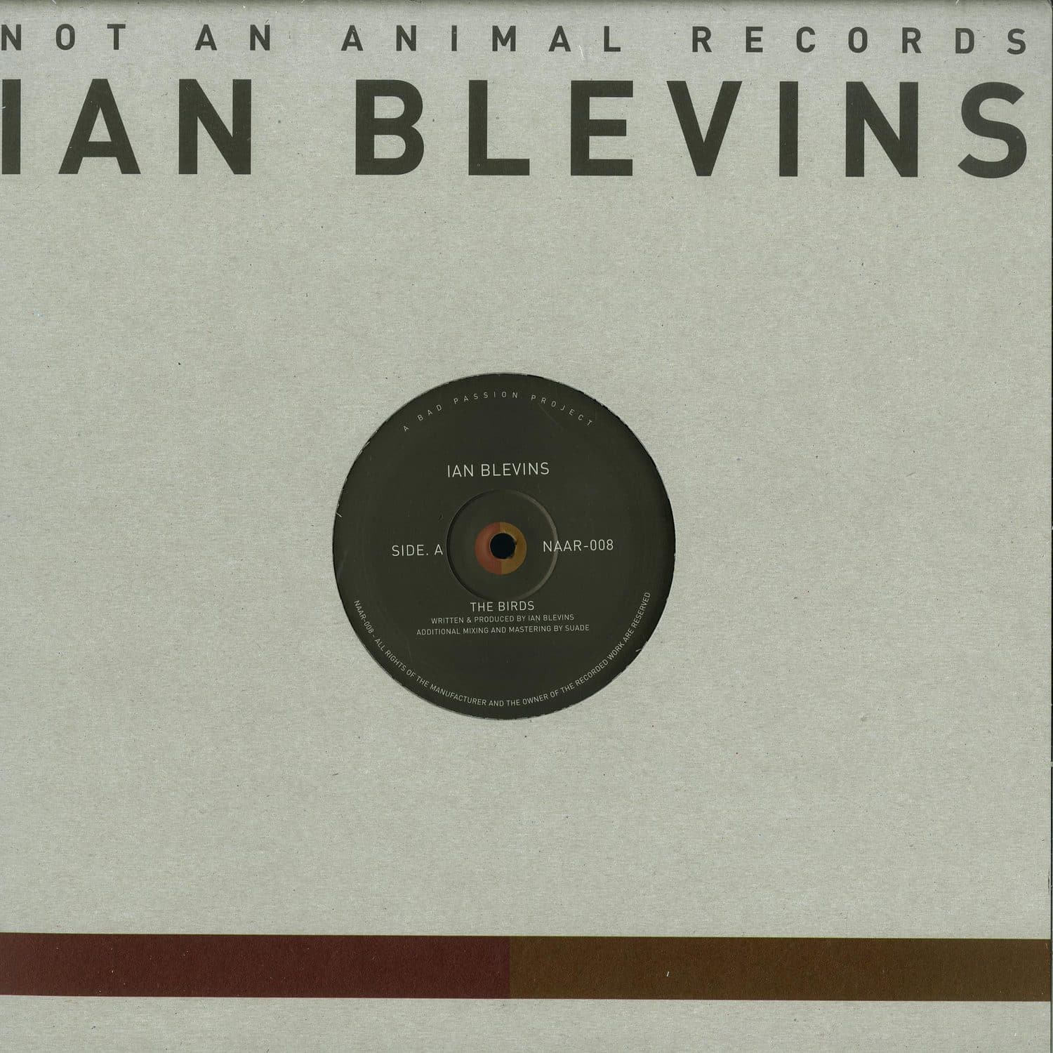 Ian Blevins - THE BIRDS