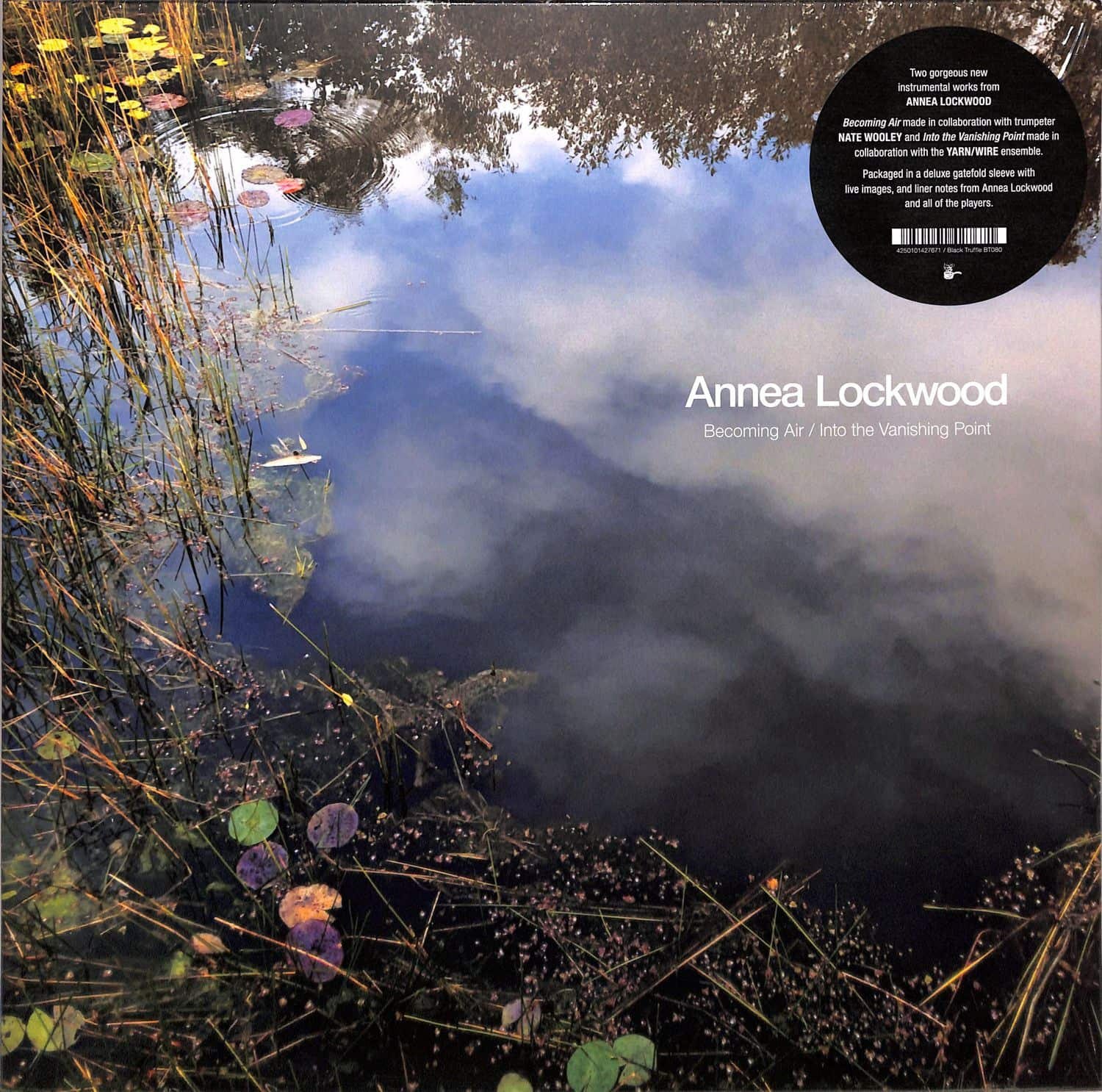 Annea Lockwood - BECOMING AIR / INTO THE VANISHING POINT
