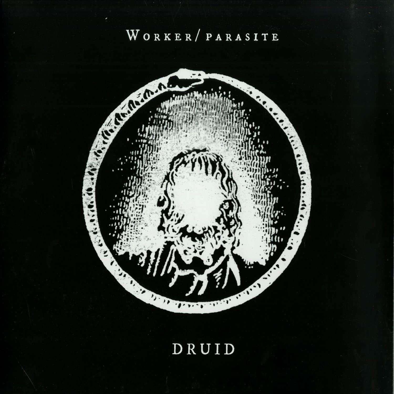 Worker Parasite - DRUID