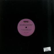 Back View : Rambal Cochet - DARK LEADER 005 - Dark Leader Records / DL005