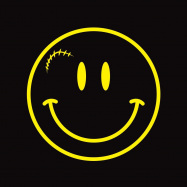 Back View : Various Artists - DONT LOSE YOUR SMILE COMPILATION (YELLOW 2X12 INCH) - DLYS Records / DLYS01