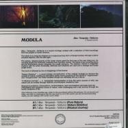 Back View : Modula - ALBA - TEMPESTA - NOTTURNO - Tartelet / TART039