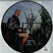 Back View : Heinz Strunk - AUFSTAND DER DUENNEN HIPSTERAERMCHEN (PICT DISC) - Audiolith / AL282 / 08930