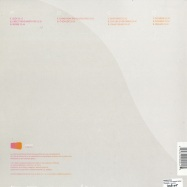 Back View : Swimmingpool - ANYTHING THAT DOESNT MOVE (2LP) - Combination / Core013-1