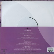 Back View : Various Artists - SPLIT EP (10 INCH) - Dance to the Radio / dttr066