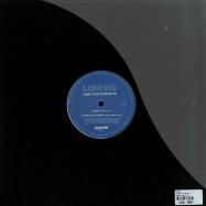 Back View : Lumina - LONG TIME COMING EP - Dogmatik / Dogm1207