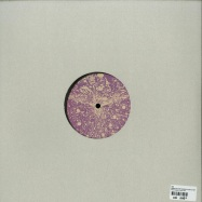 Back View : ARK - NOISES & SOME VOICES EP (180 G VINYL) - Silver Network / Silver 045
