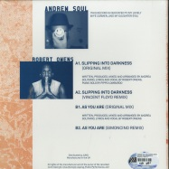 Back View : Andrew Soul feat Robert Owens - SLIPPING INTO DARKNESS EP - Vibraphone / VIBR 013
