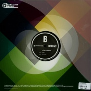 Back View : Hydro & Halogenix - DISILLUSIONED / TRIESTE - Horizons Music / hzn49