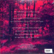 Back View : Lucca Leeloo - BEYOND INFINITY REMIXES (LP) - Lucca Leeloo / LLE002