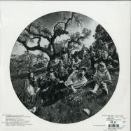 Back View : Grateful Dead - AOXOMOXOA (LTD PICTURE LP) - Rhino / 0349785609