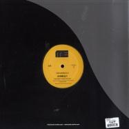 Back View : Cari Lekebusch - SPINDIZZY - Mote Evolver / Mote013
