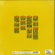 Back View : Fatboy Slim - THE BEST OF (2LP) - Skint Records /  405053845572
