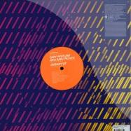 Back View : Gadi Mizrahi aka Baby Prince - NOBODY EP - Somethink Sounds / stsep009