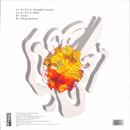 Back View : Roman Fluegel - AMINA EP - Running Back / RB097
