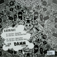 Back View : Bjoern Nafe - TEEN SPIRIT - Damm Records / Damm032