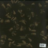 Back View : Ada Kaleh - DENE DESCRIS LP PART 2 (2X12 / VINYL ONLY / 180G) - Ada Kaleh Romania / AK005b