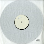 Back View : STP - THE FALL REMIXES - The Final Experiment / TFR / 33336