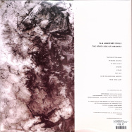 Back View : 36 / Awakened Souls - THE OTHER SIDE OF DARKNESS (2LP) - Past Inside The Present US / PITPV 039