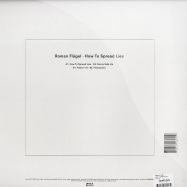 Back View : Roman Flugel - HOW TO SPREAD LIES - Dial 054