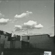 Back View : Loji - LOFEYE (LP) - Youngbloods / ybz011
