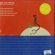 Back View : Kincaid feat. Blancmange - BIG FAT HEAD (MOSCOMAN & TRIKK REMIX) - Disco Halal / DH019