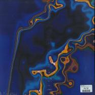 Back View : Hiro Kone - A FOSSIL BEGINS TO BRAY (LP + MP3) - Dais / DAIS143LP / 00136859