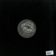 Back View : Alex Cortex - MULTI (FLORIAN KUPFER RMX)(180 G VINYL) - Barba Records / BAR003