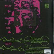 Back View : Aphelion - WHAT YOU WANT (SILICON SCALLY REMIX) - Bliq / BLIQ19