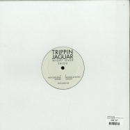 Back View : Trippin Jaguar - NIGHT OVER ERIDU (CANSON, DANDARA & ARUTANI REMIXES) - Amselcom / AMSEL032