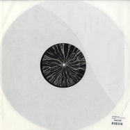Back View : Davide Squillace - WHAT ABOUT THE VICE (REPRESS) - Desolat X / Desolatx008