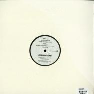 Back View : Carsten Rausch - POLTERFUCHS EP - Acker Dub / Ackerdub016
