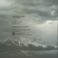 Back View : Aleja Sanchez - SIGNUMS DE CAELO - Northallsen Records / NTSLTD001