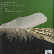 Back View : Robin Saville - BUILD A DIORAMA (LP) - Morr Music / morr172-lp