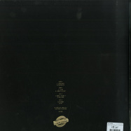Back View : Any Gram - DS GO IN YA PIPE (180 GRAM VINYL 2XLP) - Keeps Going / KGLP 001
