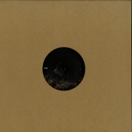 Front View : Amir Alexander - THE LANDS BEYOND PT.2 - Release Sustain / RS026