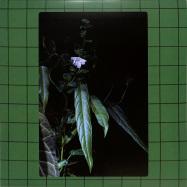 Front View : Interstellar Funk & Roberta Valera - DEVILS JUICE - Artificial Dance / AD010
