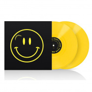 Front View : Various Artists - DONT LOSE YOUR SMILE COMPILATION (YELLOW 2X12 INCH) - DLYS Records / DLYS01