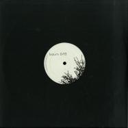 Front View : Mike Schommer - LAERCHENBAUM EP - Baum Records / BAUM019