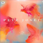 Front View : Pete Josef - I RISE WITH THE BIRDS (2LP) - Sonar Kollektiv / SK375LP / 05202551
