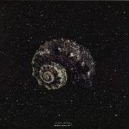 Front View : Denis Rood - MINOTAUR EP - Cochlea Music / COC002