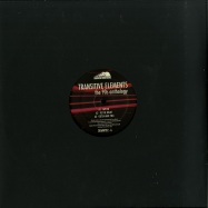 Front View : Transitive Elements - THE 90S ANTHOLOGY (VINYL 1) - Down Da Mountains / DDMNT02-FX1