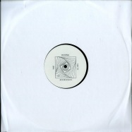 Front View : The Donna Smith Experience - DESIRE - This Is Our Time / TIOT-DISCO2