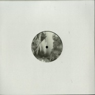 Front View : Lewis Fautzi / Eric Fetcher / Reeko / Shifted - UNKNOWN LANDSCAPES SELECTED 06 - PoleGroup / POLEGROUP055